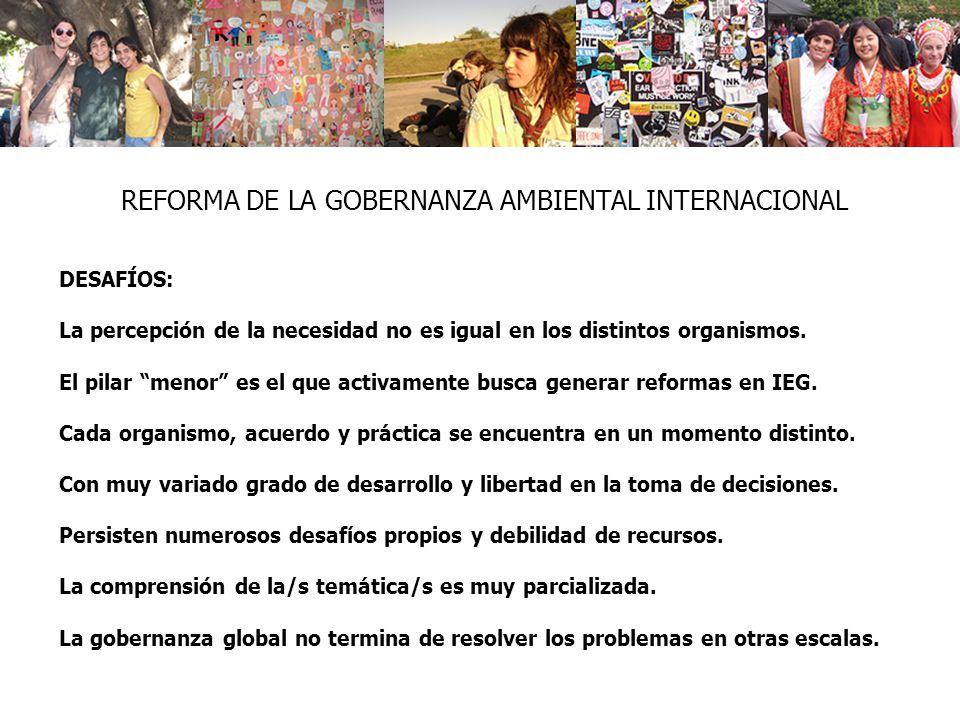 REFORMA DE LA GOBERNANZA AMBIENTAL INTERNACIONAL DESAFÍOS: La percepción de la necesidad no es igual en los distintos organismos.