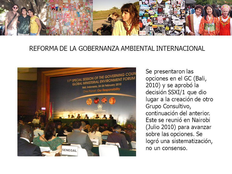 REFORMA DE LA GOBERNANZA AMBIENTAL INTERNACIONAL Se presentaron las opciones en el GC (Bali, 2010) y se aprobó la decisión SSXI/1 que dio lugar a la creación de otro Grupo Consultivo, continuación del anterior.