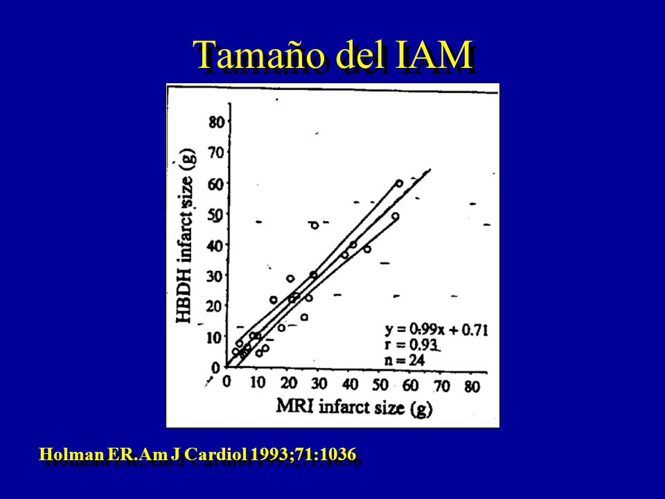Tamaño del IAM Holman ER.Am J Cardiol 1993;71:1036