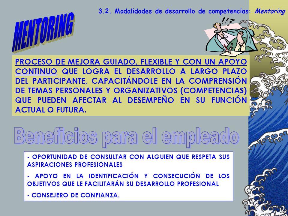 3.2. Modalidades de desarrollo de competencias: Mentoring PROCESO DE MEJORA GUIADO, FLEXIBLE Y CON UN APOYO CONTINUO QUE LOGRA EL DESARROLLO A LARGO P