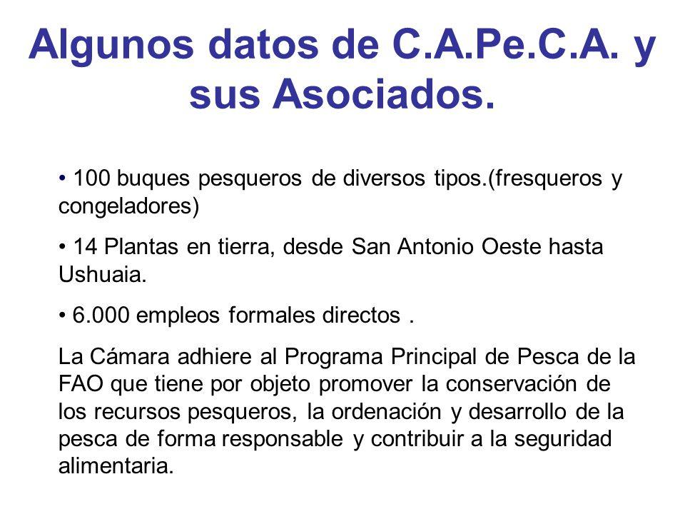 Algunos datos de C.A.Pe.C.A.y sus Asociados.