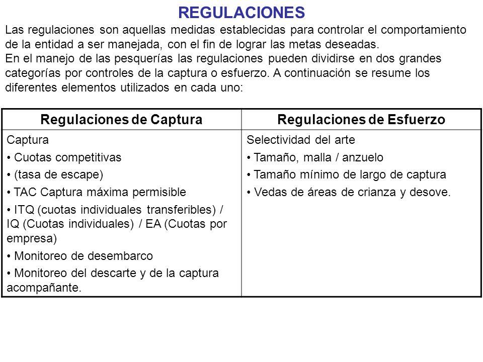 REGULACIONES Las regulaciones son aquellas medidas establecidas para controlar el comportamiento de la entidad a ser manejada, con el fin de lograr las metas deseadas.