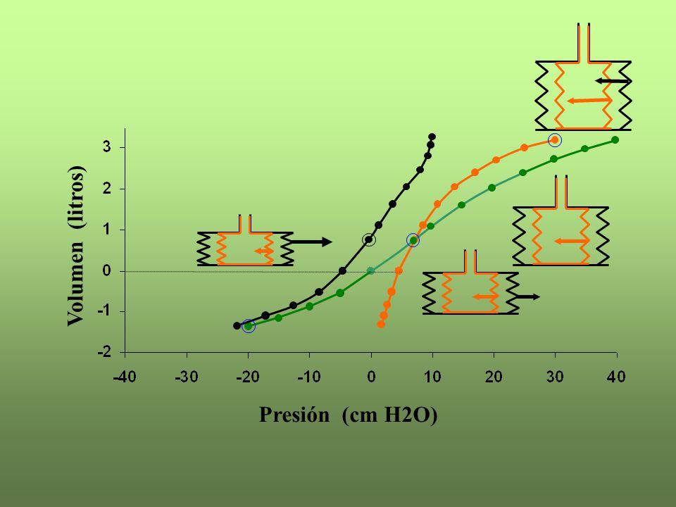 Presión (cm H2O) Volumen (litros)