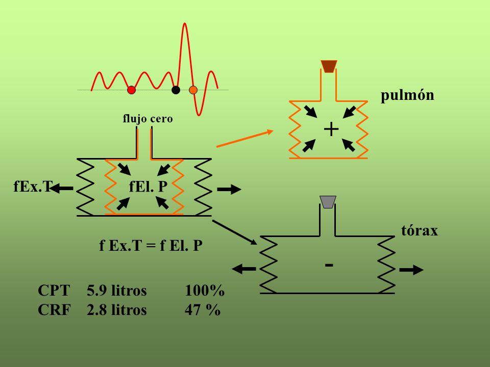 CPT 5.9 litros100% CRF 2.8 litros47 % + - fEx.T fEl. P flujo cero f Ex.T = f El. P pulmón tórax
