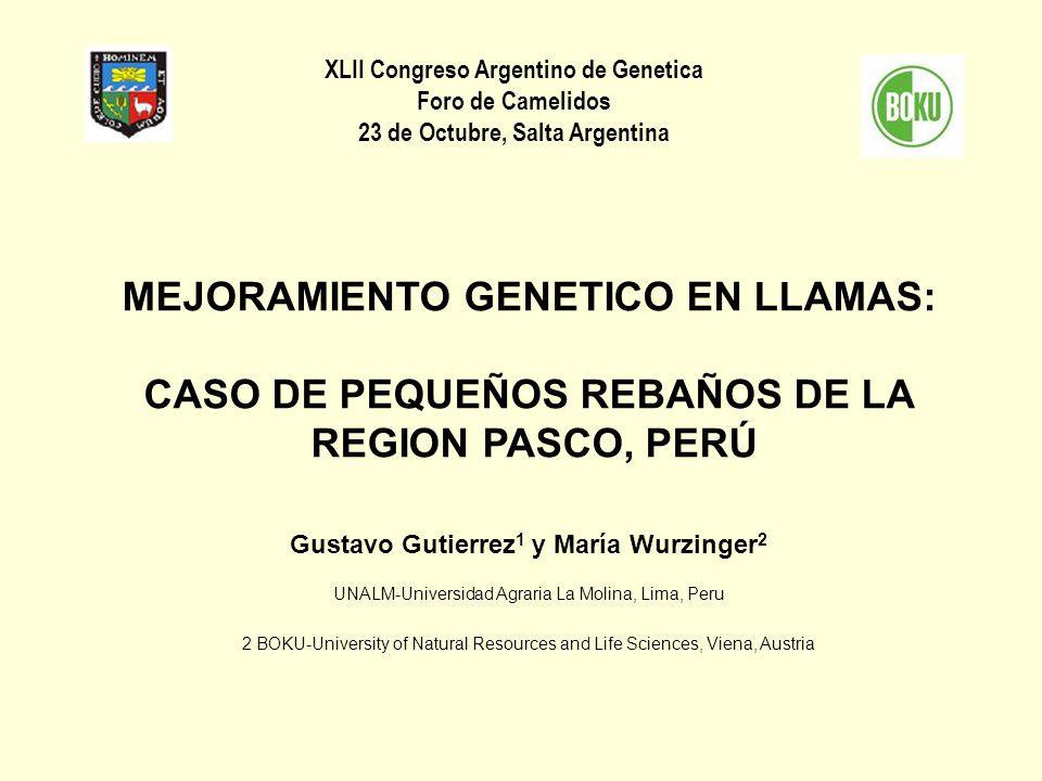 XLII Congreso Argentino de Genetica Foro de Camelidos 23 de Octubre, Salta Argentina MEJORAMIENTO GENETICO EN LLAMAS: CASO DE PEQUEÑOS REBAÑOS DE LA R