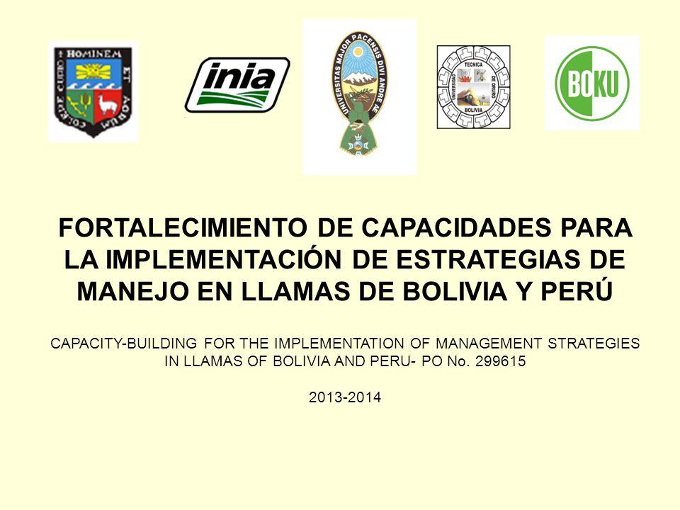 FORTALECIMIENTO DE CAPACIDADES PARA LA IMPLEMENTACIÓN DE ESTRATEGIAS DE MANEJO EN LLAMAS DE BOLIVIA Y PERÚ CAPACITY-BUILDING FOR THE IMPLEMENTATION OF