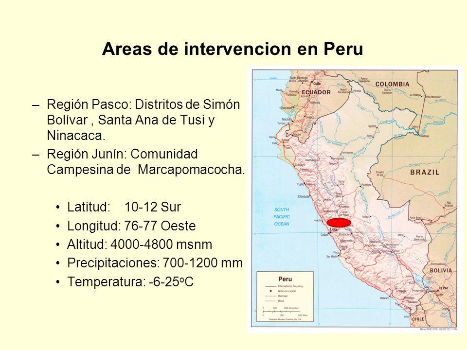 Areas de intervencion en Peru –Región Pasco: Distritos de Simón Bolívar, Santa Ana de Tusi y Ninacaca. –Región Junín: Comunidad Campesina de Marcapoma