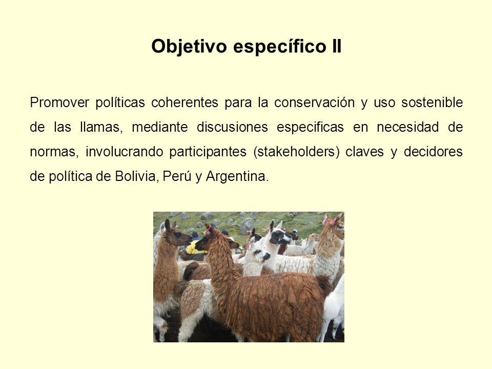 Objetivo específico II Promover políticas coherentes para la conservación y uso sostenible de las llamas, mediante discusiones especificas en necesida