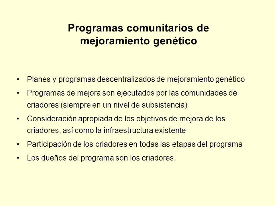 Programas comunitarios de mejoramiento genético Planes y programas descentralizados de mejoramiento genético Programas de mejora son ejecutados por la
