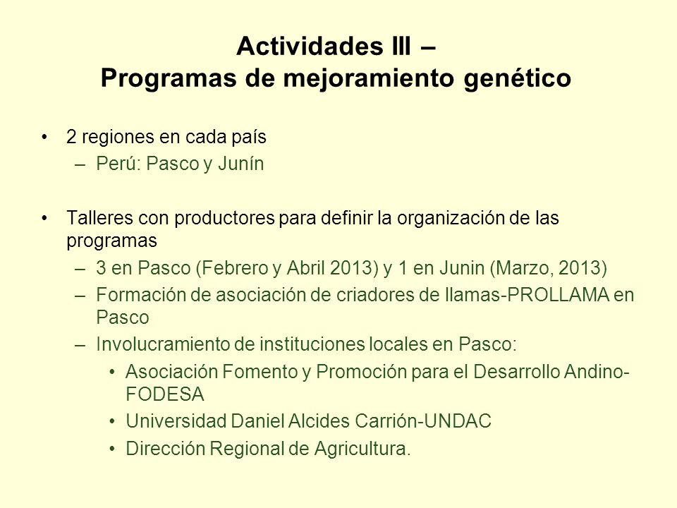 Actividades III – Programas de mejoramiento genético 2 regiones en cada país –Perú: Pasco y Junín Talleres con productores para definir la organizació