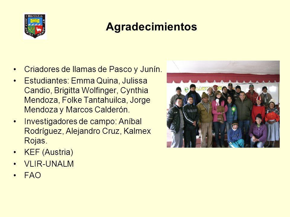Agradecimientos Criadores de llamas de Pasco y Junín. Estudiantes: Emma Quina, Julissa Candio, Brigitta Wolfinger, Cynthia Mendoza, Folke Tantahuilca,