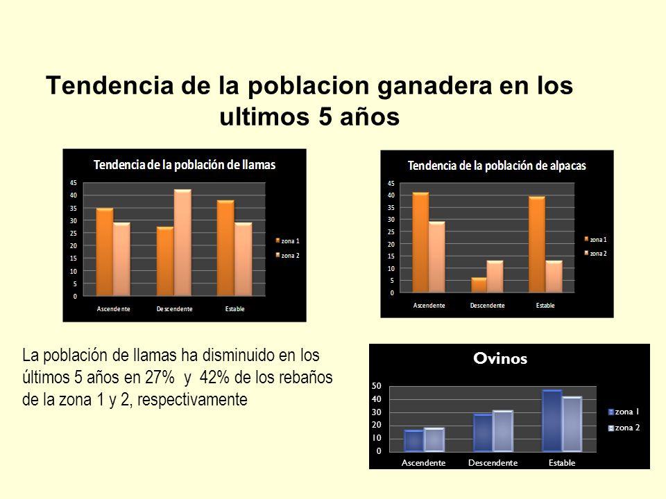 Tipos de llamas Población total de llamas según variedad (%) VariedadPorcentaje Pelada36.62 Lanuda14.62 Intermedio48.83 Proyecto de investigacion Estrategias Comunitarias para la mejora genetica de llamas en la sierra central del Peru