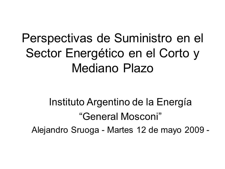 Perspectivas de Suministro en el Sector Energético en el Corto y Mediano Plazo Instituto Argentino de la Energía General Mosconi Alejandro Sruoga - Martes 12 de mayo 2009 -