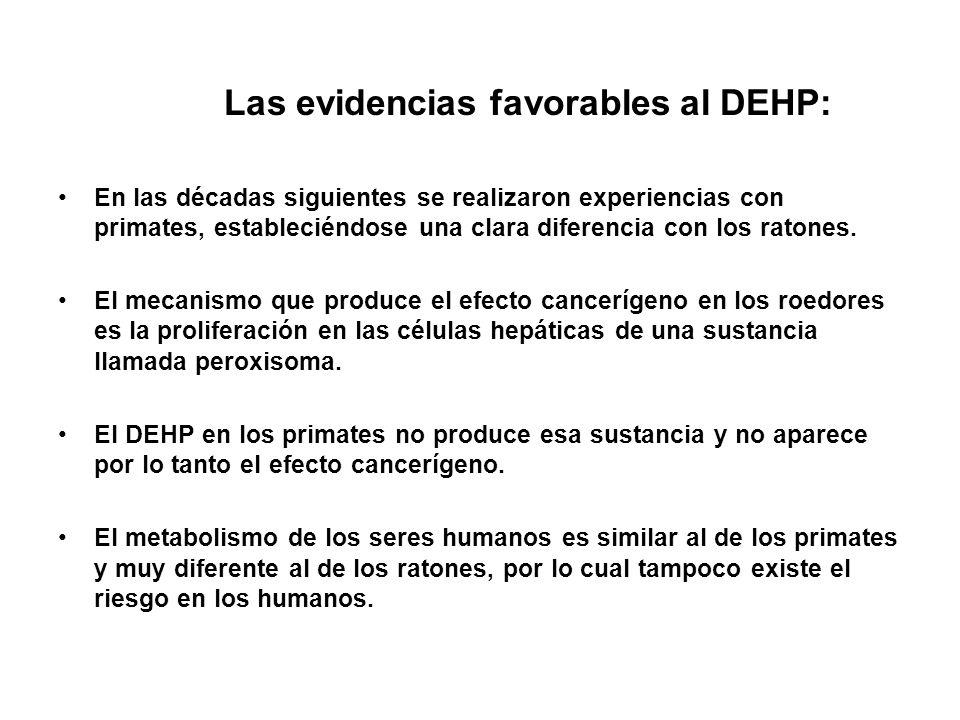 Las evidencias favorables al DEHP: En las décadas siguientes se realizaron experiencias con primates, estableciéndose una clara diferencia con los rat