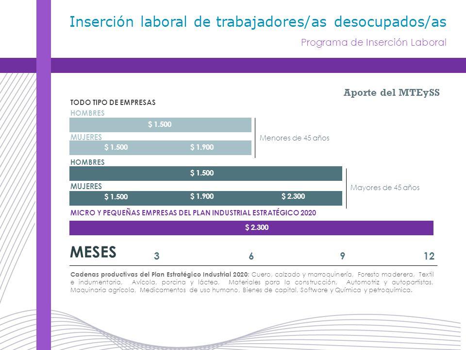 MUJERES Aporte del MTEySS MESES 36912 $ 1.500 $ 1.900$ 2.300 $ 1.500 $ 1.900 $ 1.500 $ 2.300 TODO TIPO DE EMPRESAS MICRO Y PEQUEÑAS EMPRESAS DEL PLAN INDUSTRIAL ESTRATÉGICO 2020 Menores de 45 años Mayores de 45 años HOMBRES Cadenas productivas del Plan Estratégico Industrial 2020 : Cuero, calzado y marroquinería, Foresto maderera, Textil e indumentaria, Avícola, porcina y láctea, Materiales para la construcción, Automotriz y autopartistas, Maquinaria agrícola, Medicamentos de uso humano, Bienes de capital, Software y Química y petroquímica.