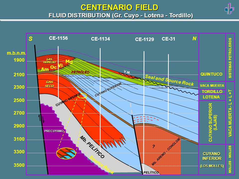 FLUID DISTRIBUTION (Gr. Cuyo - Lotena - Tordillo) CENTENARIO FIELD Mg Vi Oc Am