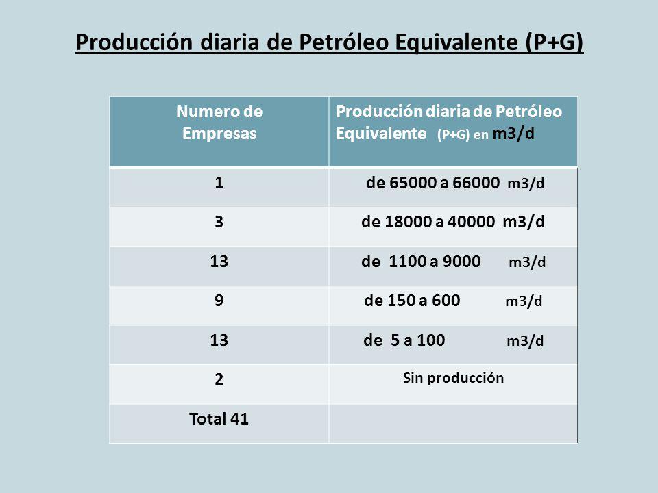 Producción diaria de Petróleo Equivalente (P+G) Numero de Empresas Producción diaria de Petróleo Equivalente (P+G) en m3/d 1 de 65000 a 66000 m3/d 3de 18000 a 40000 m3/d 13de 1100 a 9000 m3/d 9de 150 a 600 m3/d 13de 5 a 100 m3/d 2 Sin producción Total 41