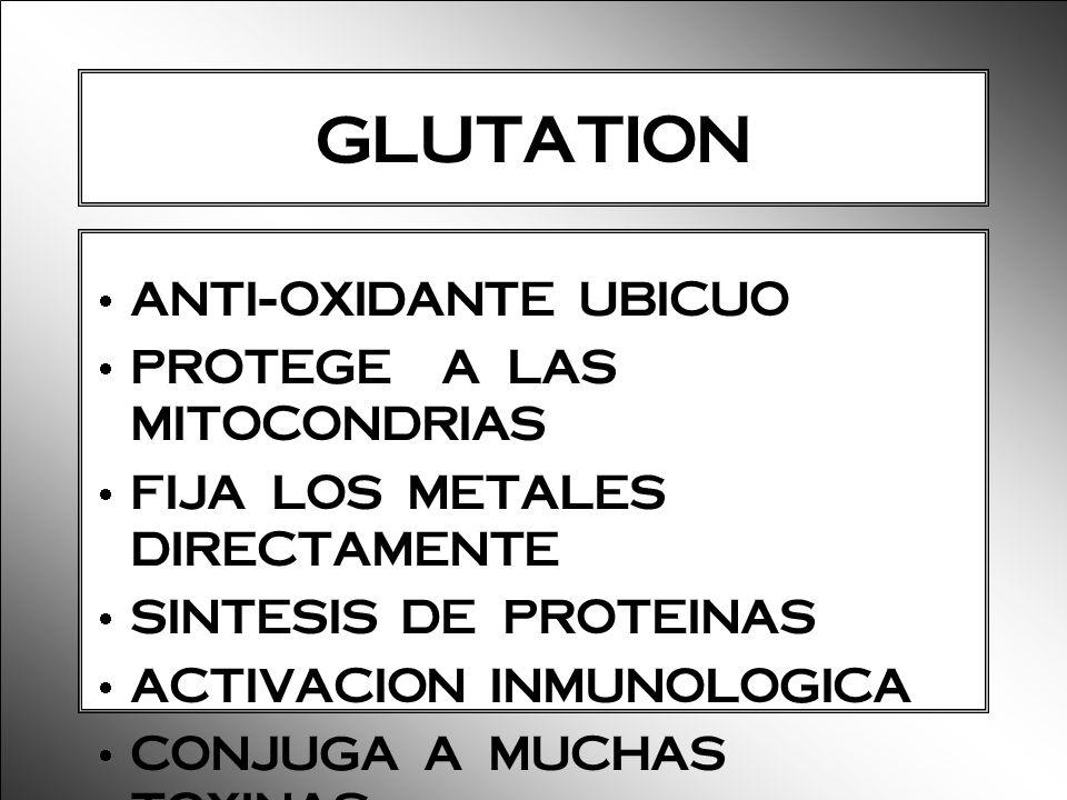 GLUTATION ANTI-OXIDANTE UBICUO PROTEGE A LAS MITOCONDRIAS FIJA LOS METALES DIRECTAMENTE SINTESIS DE PROTEINAS ACTIVACION INMUNOLOGICA CONJUGA A MUCHAS
