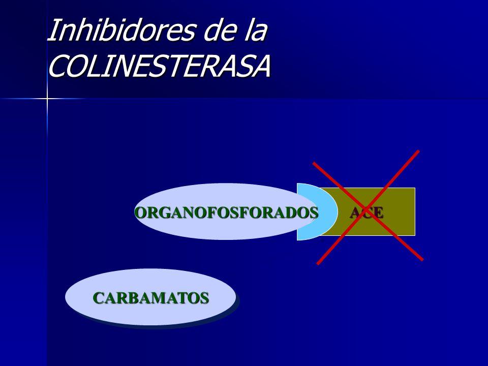 Inhibidores de la COLINESTERASA CARBAMATOSCARBAMATOS ACE ORGANOFOSFORADOS