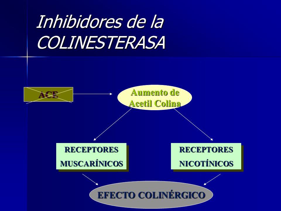 ACE Aumento de Acetil Colina RECEPTORESMUSCARÍNICOSRECEPTORESMUSCARÍNICOSRECEPTORESNICOTÍNICOSRECEPTORESNICOTÍNICOS EFECTO COLINÉRGICO