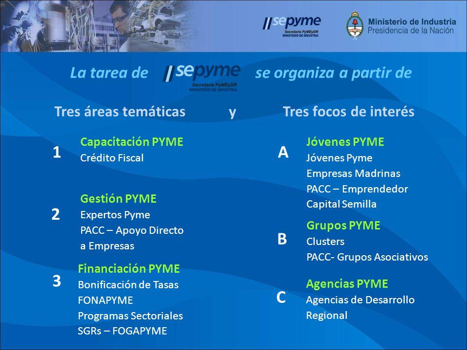 7 7 Familia de Herramientas de Apoyo a PyMEs Líneas funcionales de HERRAMIENTAS 6 meses2 años PyME Nueva Cursos para emprendedores Mentorías para emprendedores PACC Emprendedores Crédito Fiscal Programa Nac.
