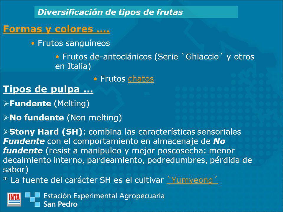 Diversificación de tipos de frutas Formas y colores ….