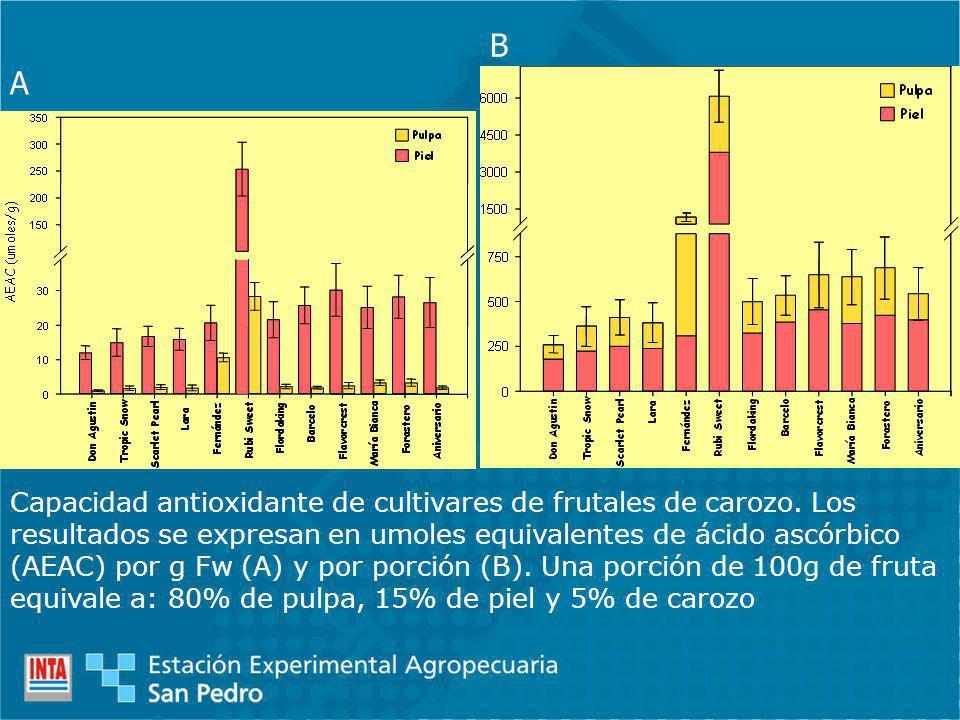 A B Capacidad antioxidante de cultivares de frutales de carozo. Los resultados se expresan en umoles equivalentes de ácido ascórbico (AEAC) por g Fw (