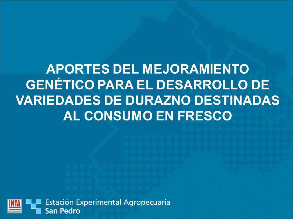 APORTES DEL MEJORAMIENTO GENÉTICO PARA EL DESARROLLO DE VARIEDADES DE DURAZNO DESTINADAS AL CONSUMO EN FRESCO
