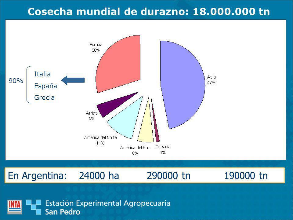 Cosecha mundial de durazno: 18.000.000 tn 90% Italia España Grecia En Argentina: 24000 ha 290000 tn 190000 tn