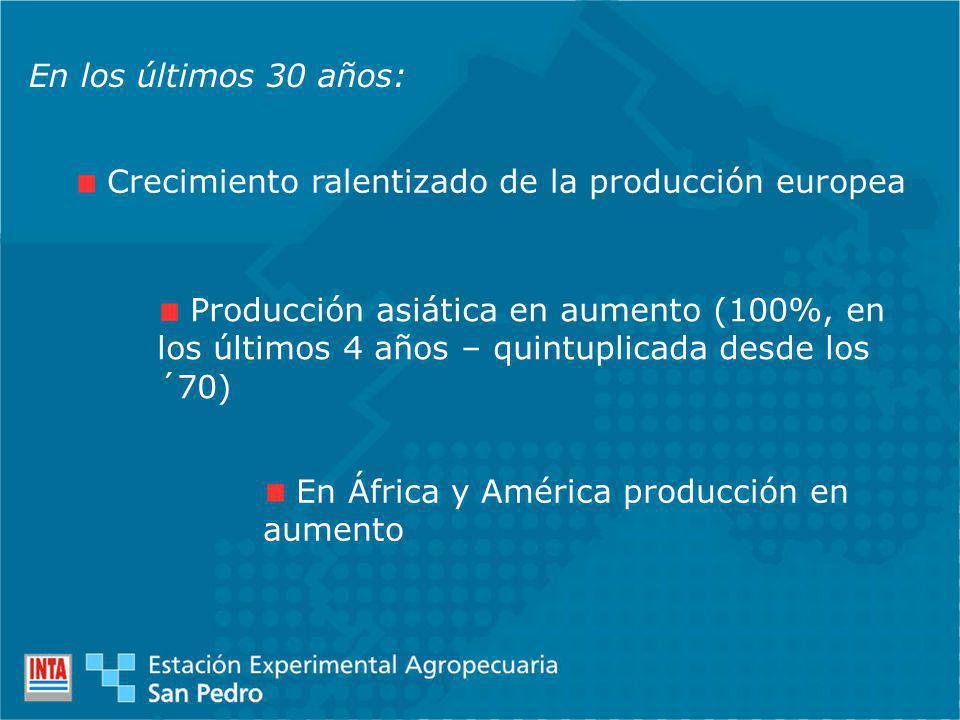 En los últimos 30 años: Crecimiento ralentizado de la producción europea Producción asiática en aumento (100%, en los últimos 4 años – quintuplicada desde los ´70) En África y América producción en aumento