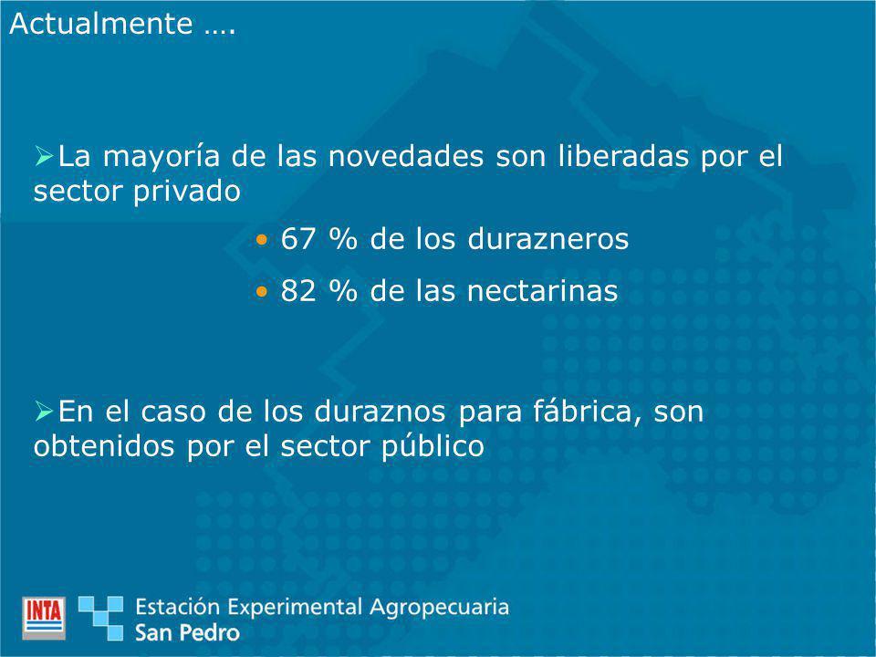 La mayoría de las novedades son liberadas por el sector privado Actualmente …. 67 % de los durazneros 82 % de las nectarinas En el caso de los durazno