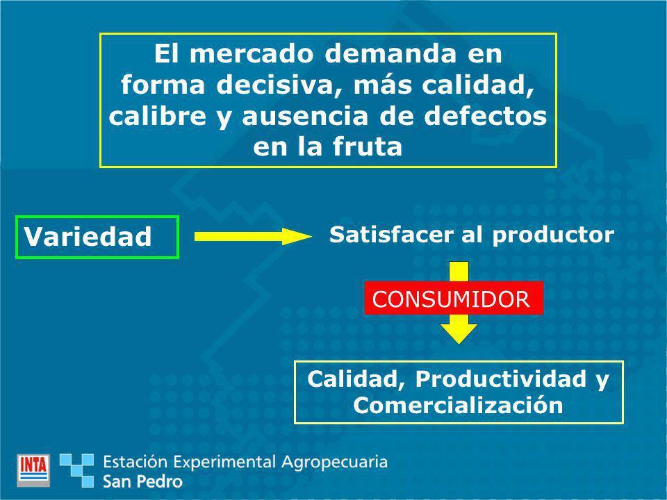 Variedad Satisfacer al productor Calidad, Productividad y Comercialización El mercado demanda en forma decisiva, más calidad, calibre y ausencia de defectos en la fruta CONSUMIDOR
