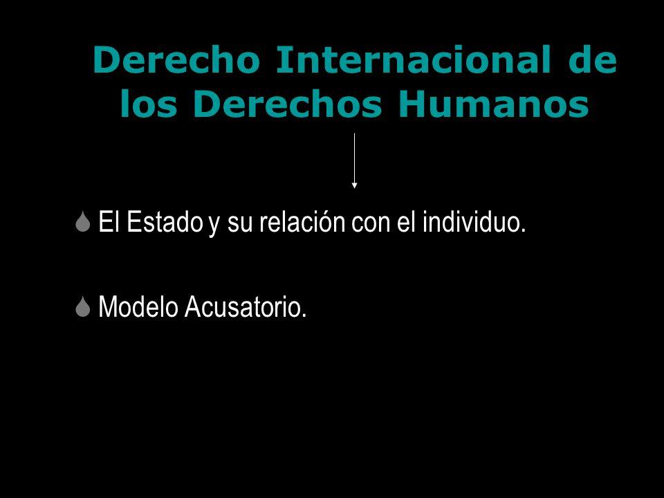 Derecho Internacional de los Derechos Humanos El Estado y su relación con el individuo. Modelo Acusatorio.