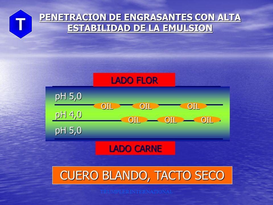 LADO FLOR LADO CARNE pH 5,0 pH 4,0 ACEITE ACEITEACEITEACEITE ACEITE PENETRACION DE ENGRASANTES CON BAJA ESTABILIDAD DE LA EMULSION CUERO FIRME, TACTO