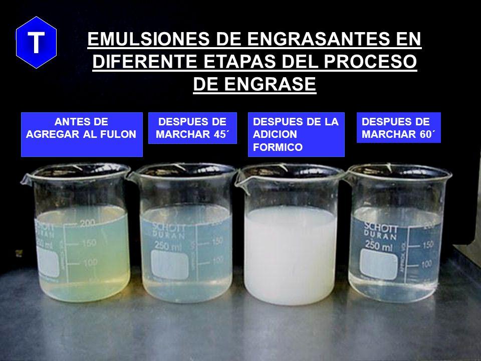 PENETRACION DE ENGRASANTES CON ALTA ESTABILIDAD DE LA EMULSION pH 4,0 pH 5,0 LADO FLOR LADO CARNE OILOILOIL OILOIL pH 5,0 CUERO BLANDO, TACTO SECO T T