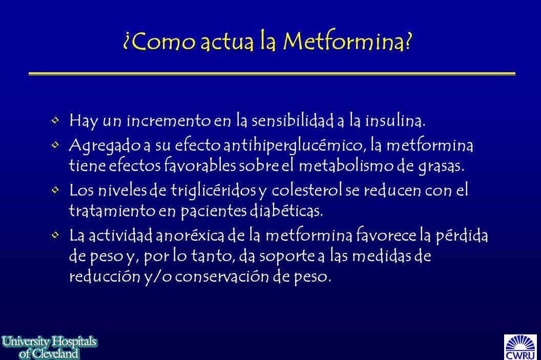 ¿Como actua la Metformina.Hay un incremento en la sensibilidad a la insulina.