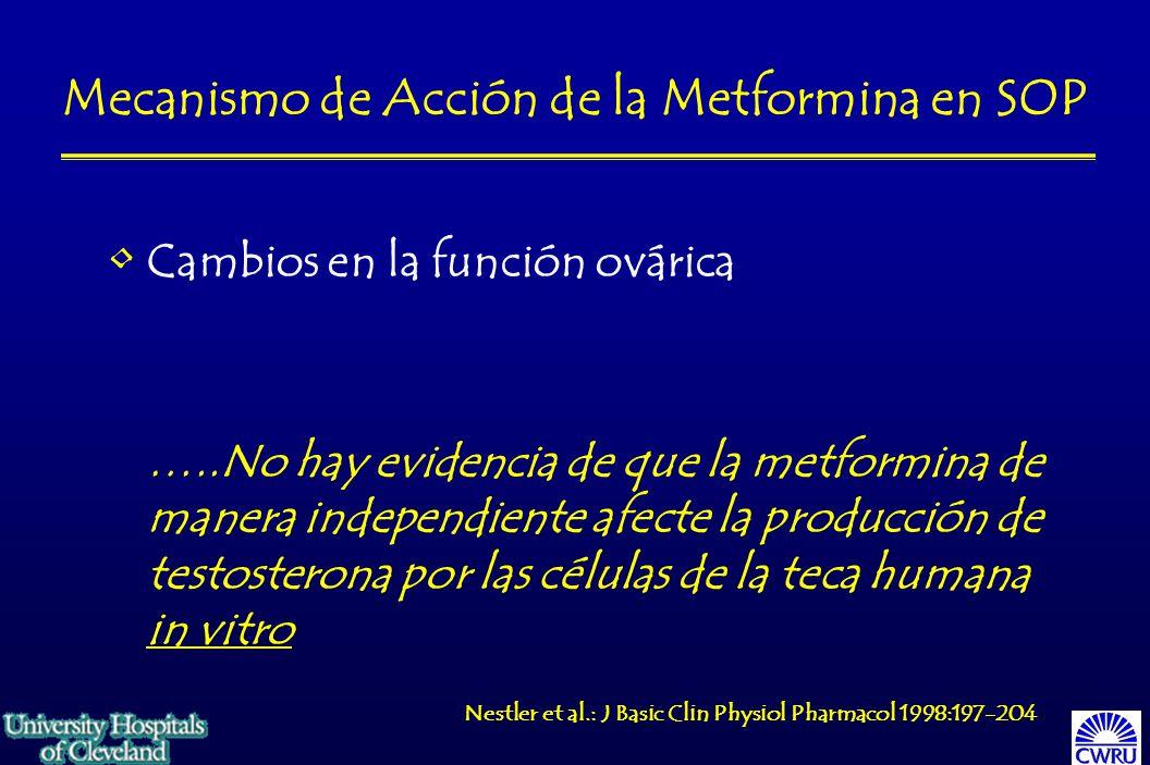 Mecanismo de Acción de la Metformina en SOP Cambios en la función ovárica …..No hay evidencia de que la metformina de manera independiente afecte la producción de testosterona por las células de la teca humana in vitro Nestler et al.: J Basic Clin Physiol Pharmacol 1998:197-204