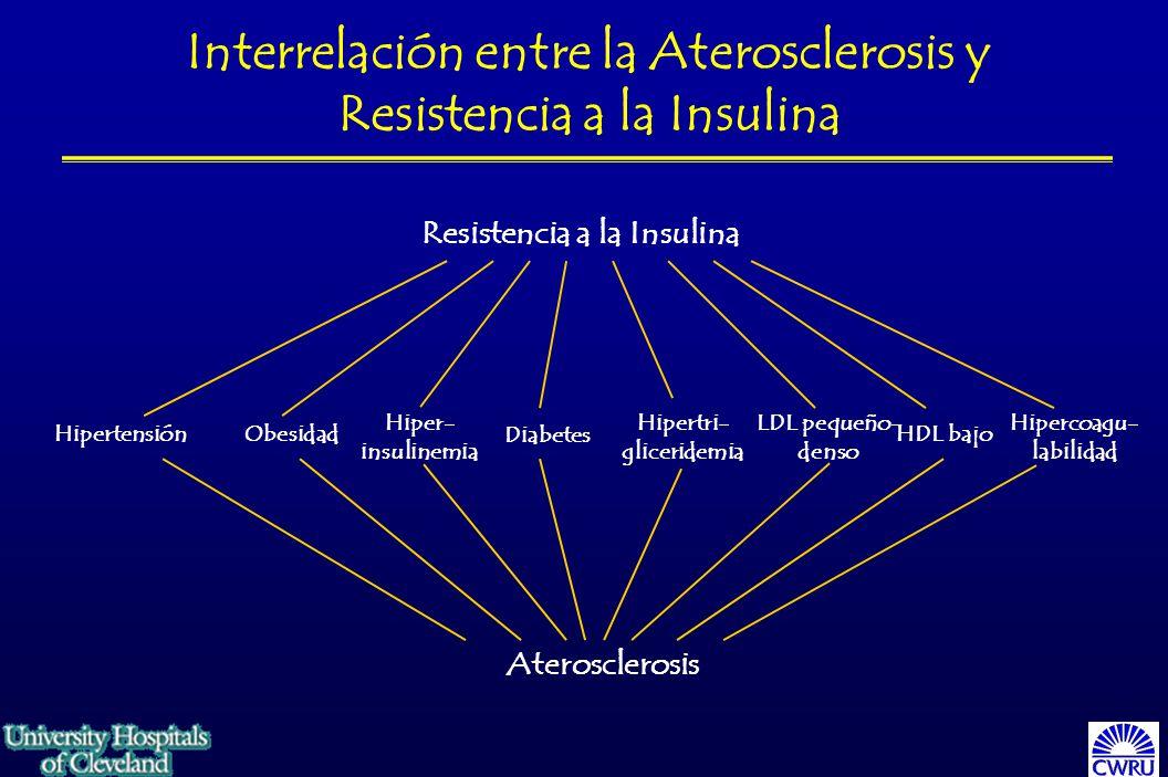 HipertensiónObesidad Hiper- insulinemia Diabetes Hipertri- gliceridemia LDL pequeño- denso HDL bajo Hipercoagu- labilidad Aterosclerosis Resistencia a la Insulina Interrelación entre la Aterosclerosis y Resistencia a la Insulina