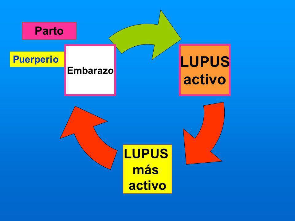 LUPUS activo LUPUS más activo Embarazo Puerperio Parto