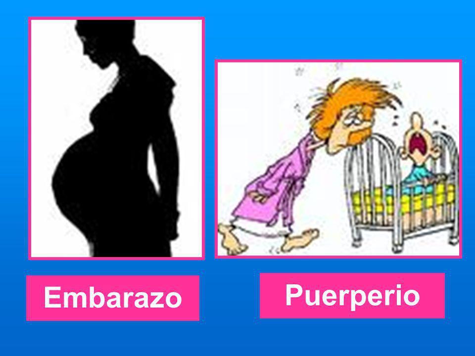 Embarazo Puerperio