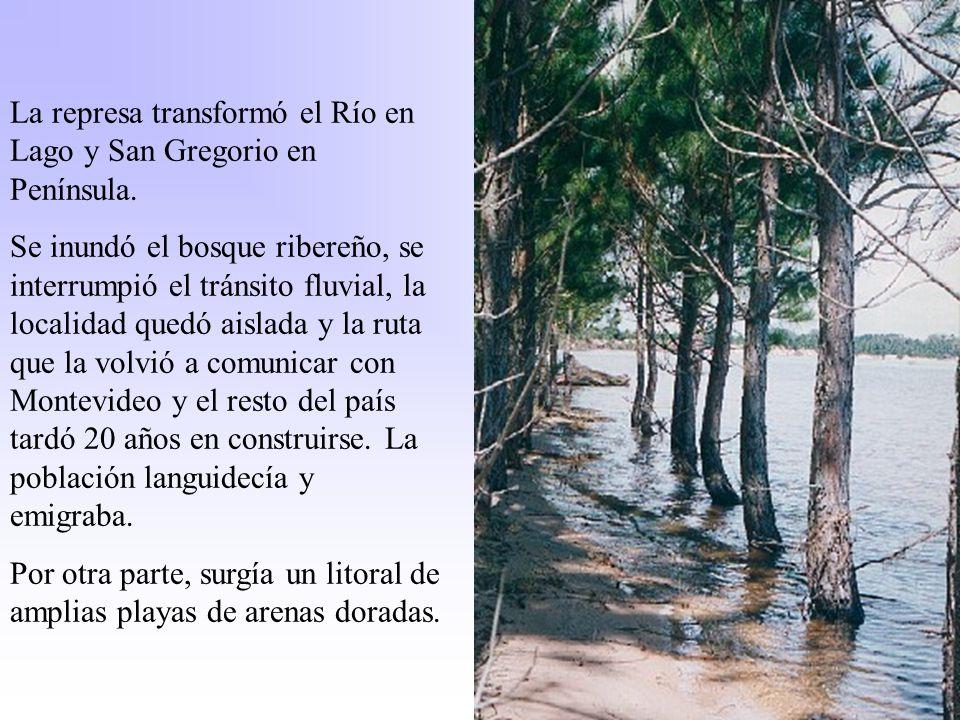 La represa transformó el Río en Lago y San Gregorio en Península. Se inundó el bosque ribereño, se interrumpió el tránsito fluvial, la localidad quedó