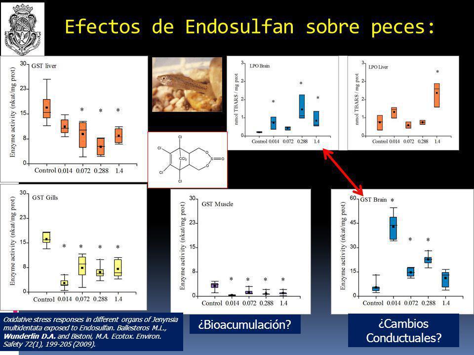 J.multidentata Jenynsia multidentata (Pisces, Anablepidae) Efecto de Lindano sobre peces nativos II: J.multidentata Integrated Survey on Toxic Effects