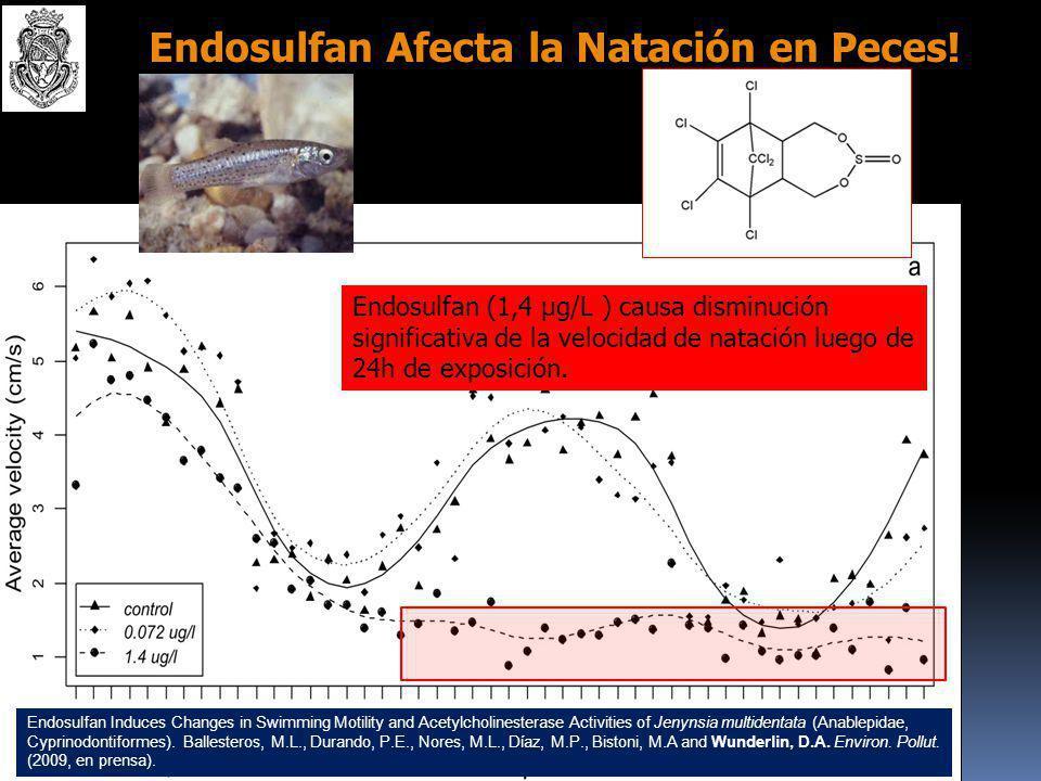 Endosulfan en Pejerreyes de la Laguna Mar Chiquita (Cba.): Odontesthes bonariensis (Pisces, Atherinidae) Endosulfan α+β y ES se acumulan en hígado y m
