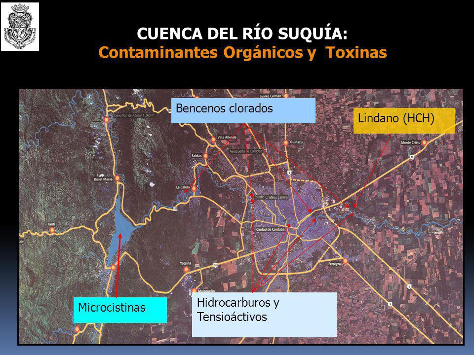 Use of Water Quality Indices to verify the impact of Córdoba City (Argentina) on Suquía River .