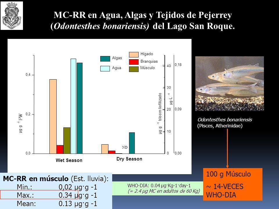MC-RR en Agua, Algas y Tejidos de Pejerrey (Odontesthes bonariensis) del Lago San Roque.
