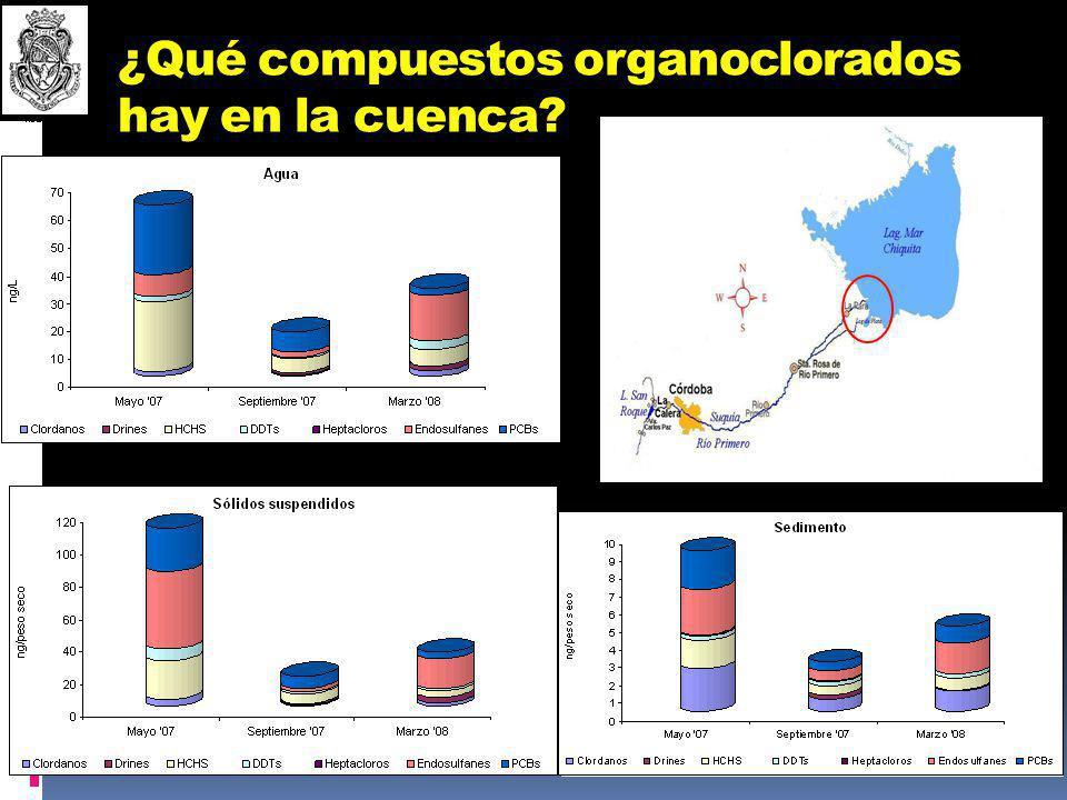 ¿Qué compuestos organoclorados hay en la cuenca? A C B