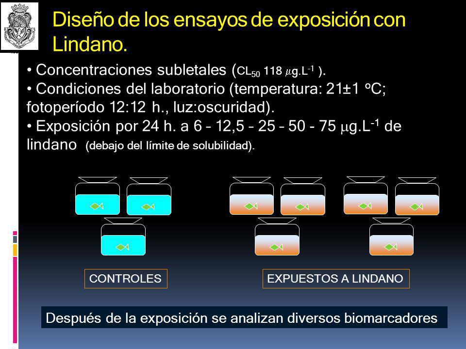 AGRADECIMIENTOS FONCyT, CONICET, Universidad Nacional de Córdoba: Subsidios, becas, etc.