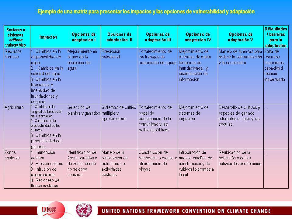 Ejemplo de una matriz para presentar los impactos y las opciones de vulnerabilidad y adaptación