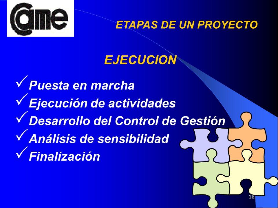 18 Puesta en marcha Ejecución de actividades Desarrollo del Control de Gestión Análisis de sensibilidad Finalización EJECUCION ETAPAS DE UN PROYECTO