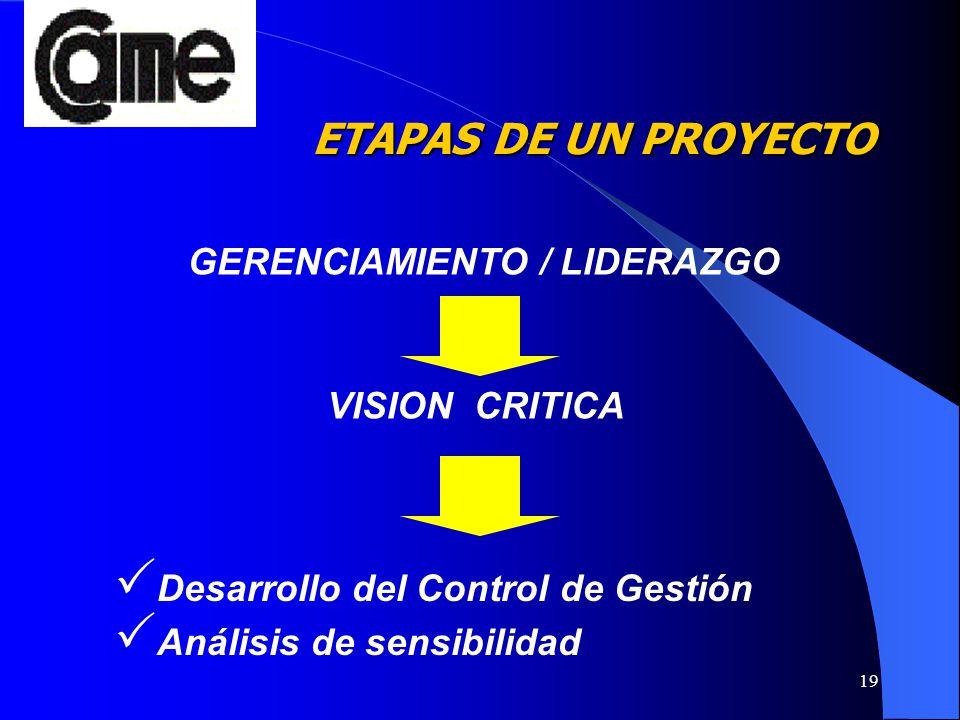 19 Desarrollo del Control de Gestión Análisis de sensibilidad GERENCIAMIENTO / LIDERAZGO VISION CRITICA ETAPAS DE UN PROYECTO ETAPAS DE UN PROYECTO